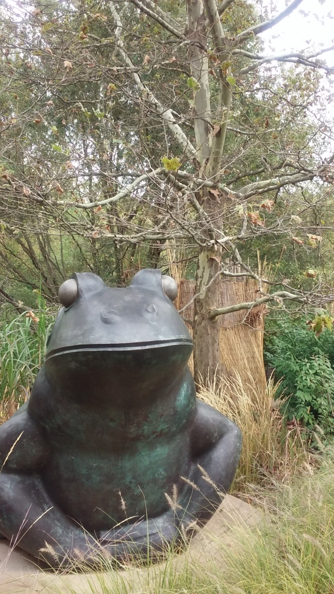 frog with sycamore Meijer Garden 100617