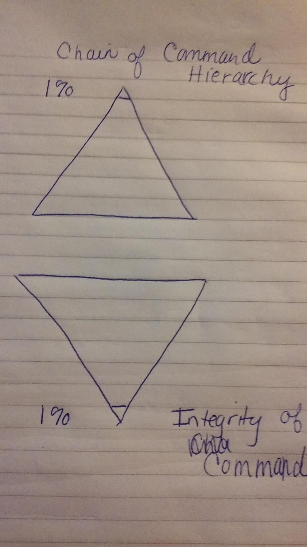 integrity diagram