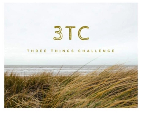 3TC banner