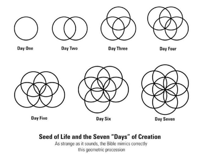 7 days of creation