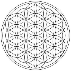 flower of life 19 circles