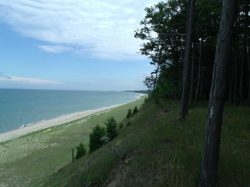 along dune 0713