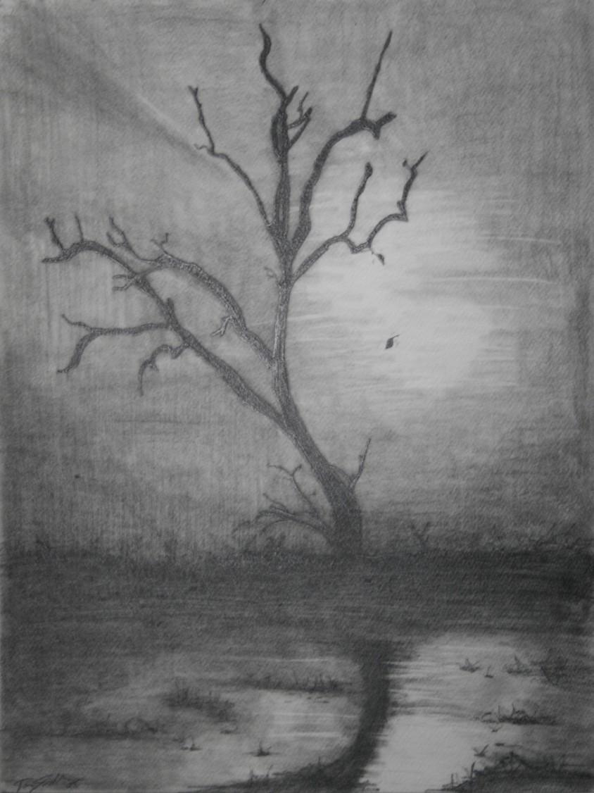dead-tree-sketch-844x1126