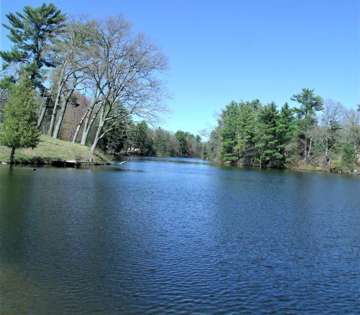 resized long shot browns pond 050521 GEDC1232 (2)