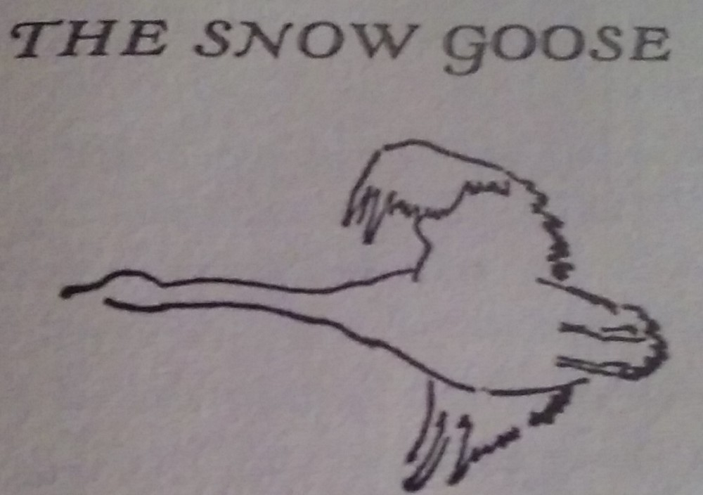 the snow goose cropped