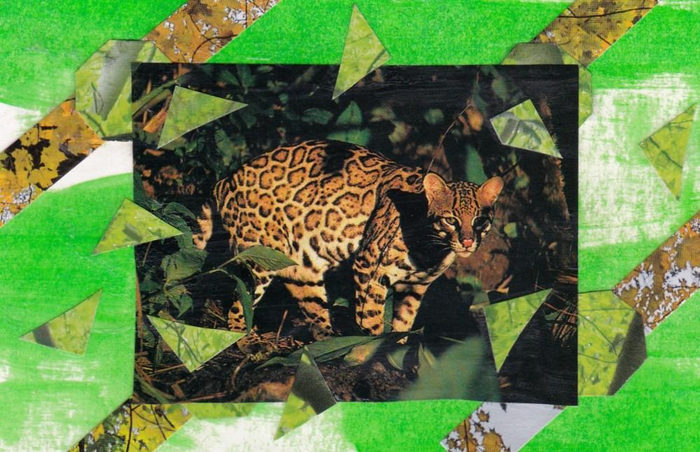 green jungle cat