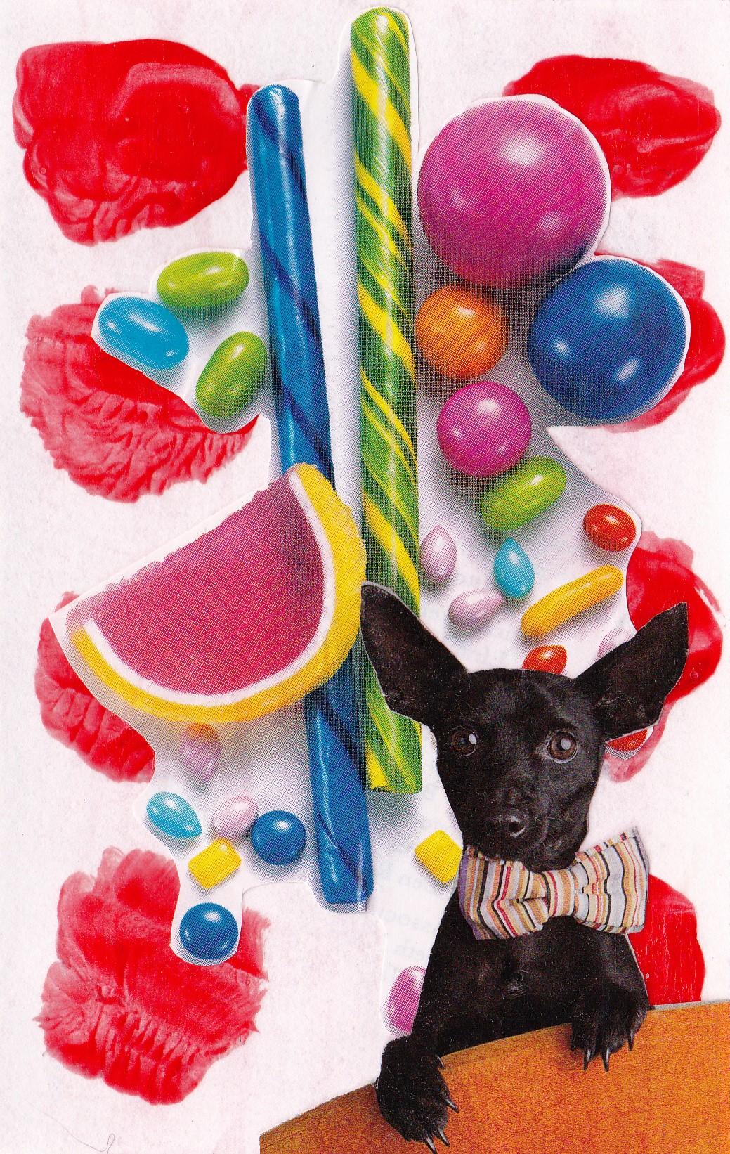orange dog candy party
