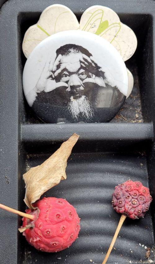 resized kousa fruit with ai weiwei 100521
